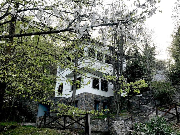 Zephyros Residence in Kissos Village with Pool