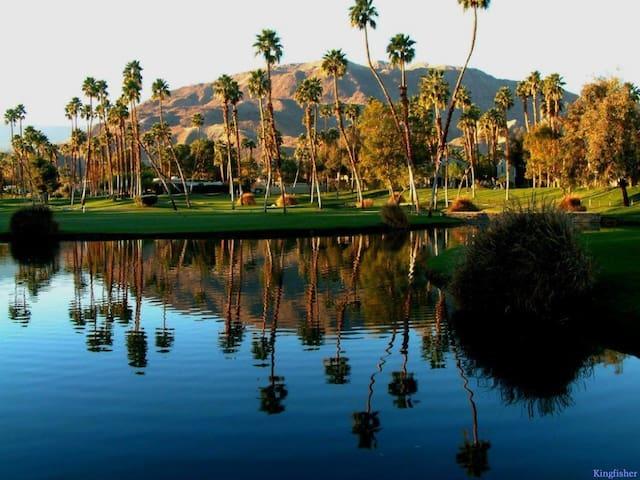 Palm Springs Tennis Club