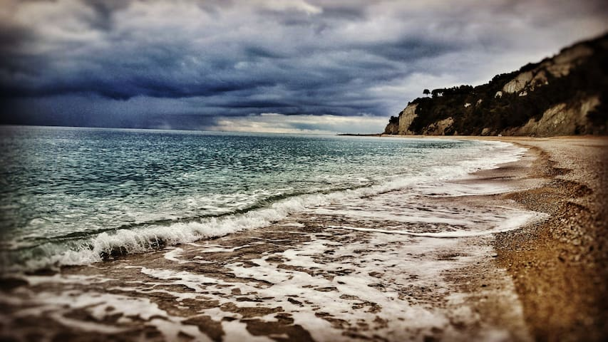 Sapori di mare a Tavullia e Gradara - Tavullia