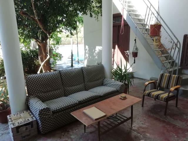 Private Room. Oasis in the centre of Nicosia.