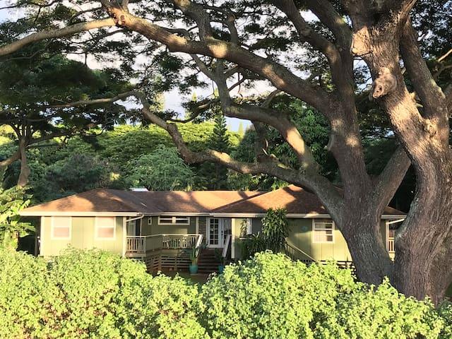 Napili Hale, Hawaiian Plantation Style Home