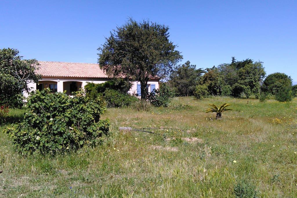 Villa grand jardin jacuzzi quelque minutes plage for Cap d agde jardin