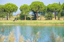 Check out the golf course in Saint-Cyprien.