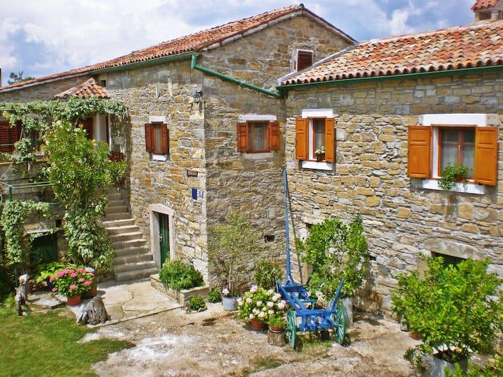 "Stone House ""Bukaleta 1"" with pool in Istria"