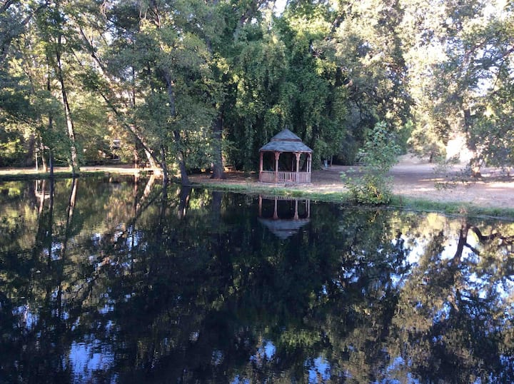 Waterfront-Creek, Pond, Swimming Pool 100% private