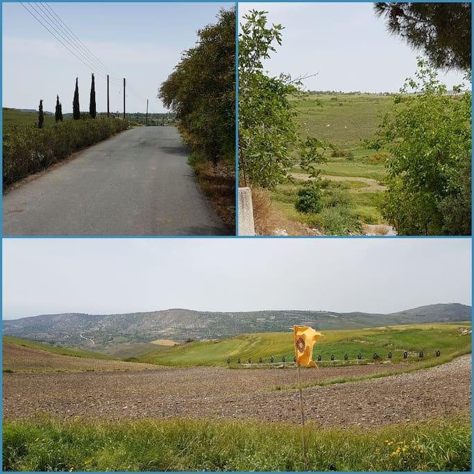 Village Fields