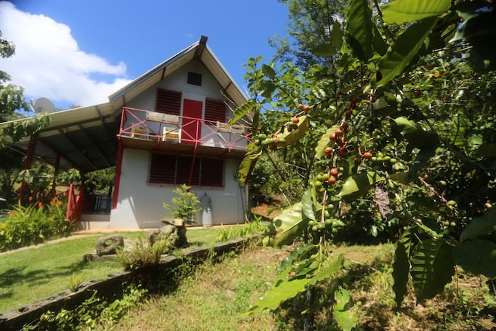 Secluded Farm House on Coffee Plantation - Las Marías - Rumah