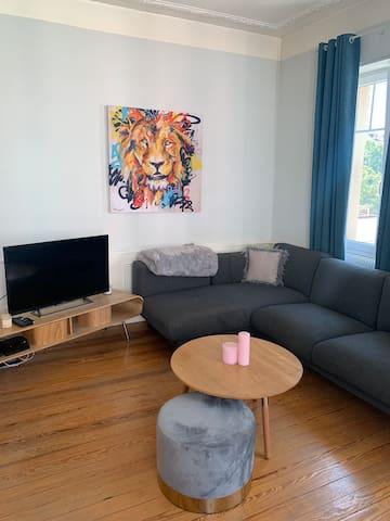 Charmant & Cosy appartement à la Krutenau