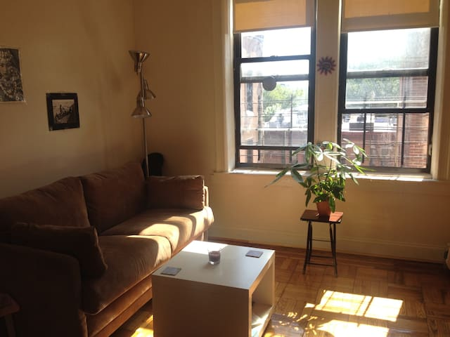 Light-filled Spacious Room Near Prospect Park