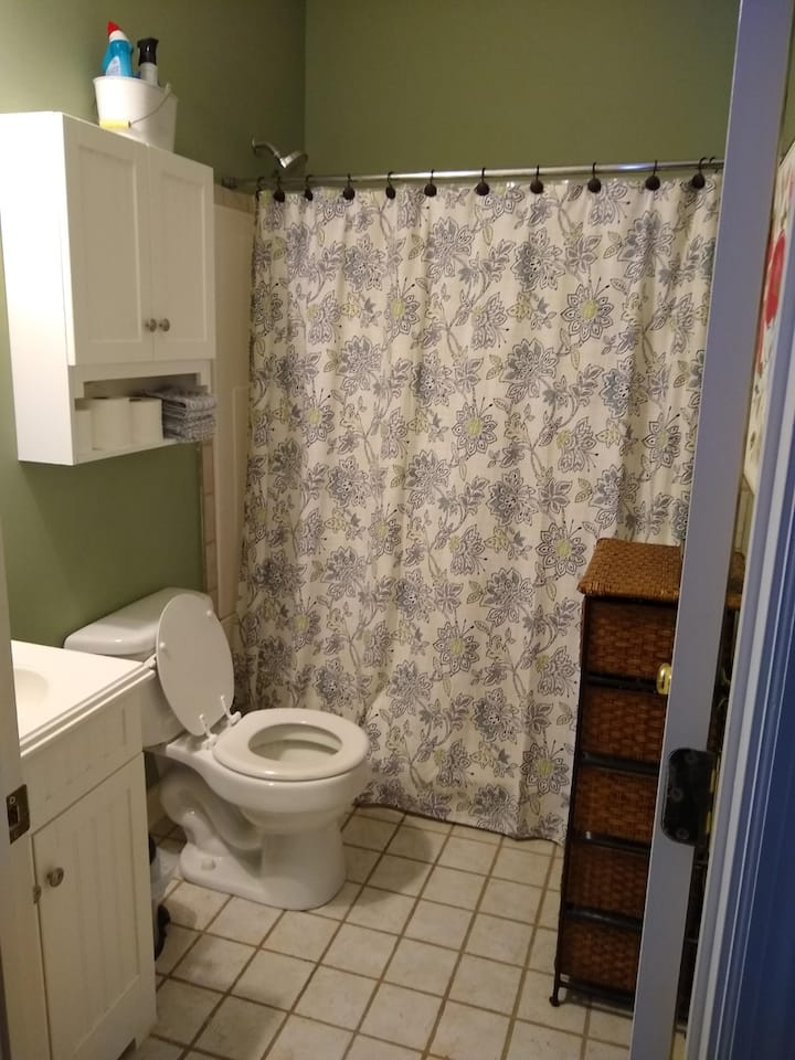 Private room and bathroom in 2-bedroom house