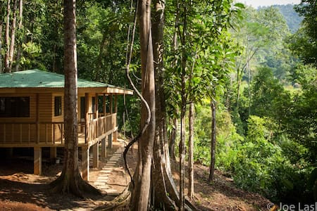 Secluded jungle cabin in primary rain forest - Tres Rios