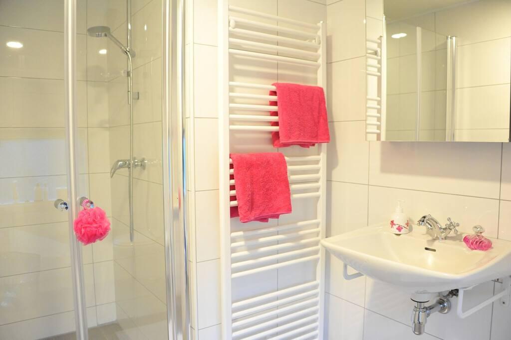 Badkamer beneden met douche
