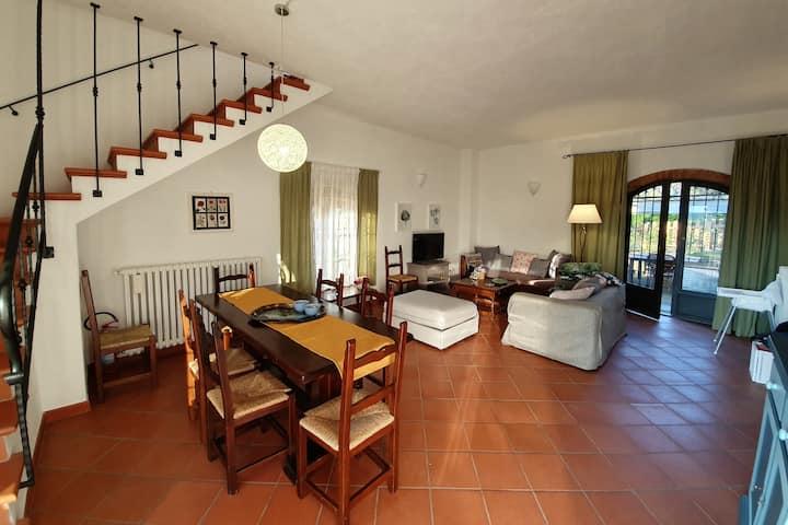 Farmhouse Casellina, Casa Olivi, Garden and Pool