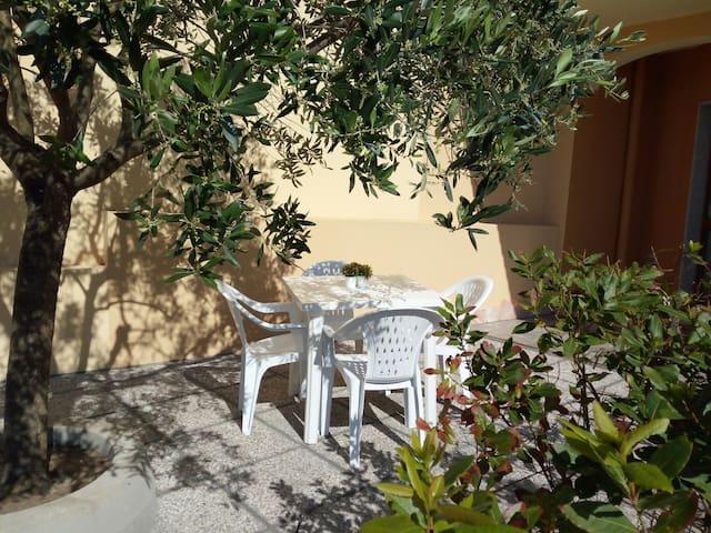 Lo spazio esterno all'alloggio, dove è possibile sedersi e rilassarsi, all'ombra di un ulivo!!!