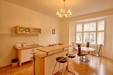 Renovated 2 bedrooms apt in Dejvice - Praag