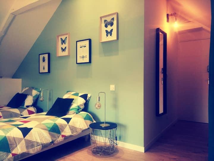 Chambre cosy n° 3, 2 lits 1 pers à 5 min de Rennes