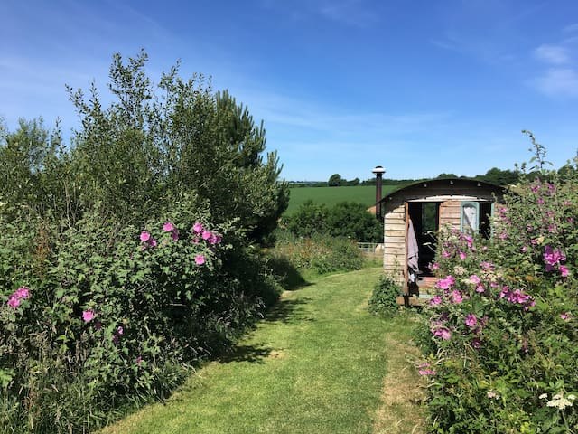 Eco hut in beautiful rural Cornwall