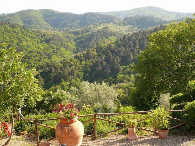 Borgo Degli Olivi - Lavanda, sleeps 2 guests - Montevarchi - Apartment