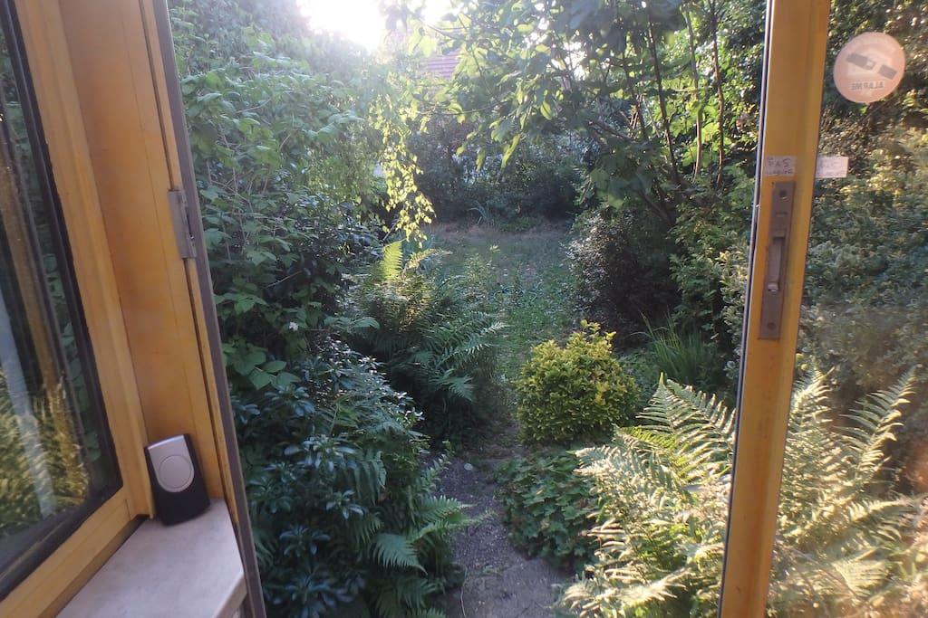 Vue sur le jardin privé : îlot de fraîcheur et tranquilité