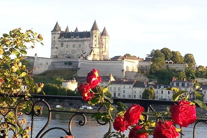 Vue sur Loire et château la belle  VILLA DE LOIRE
