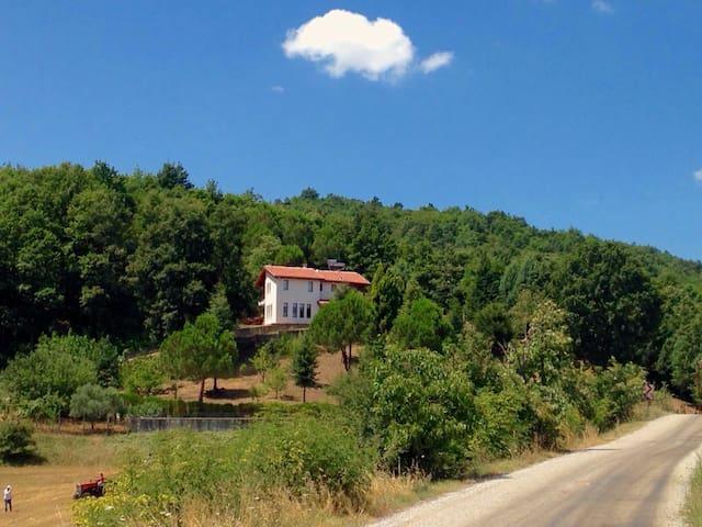Ormanın İçinde Saklı Bir Cennet - Tevfikiye Köyü - Chalet