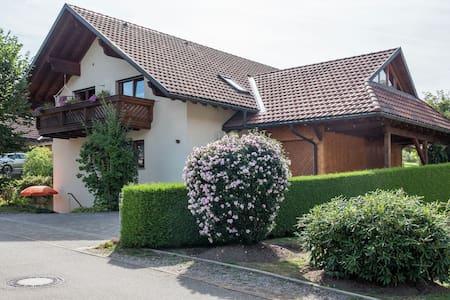 Comfortabel appartement in Rickenbach met terras