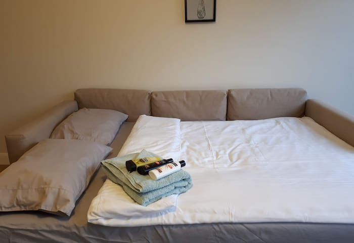 Big sofa for two people. Two blankets might be provided.