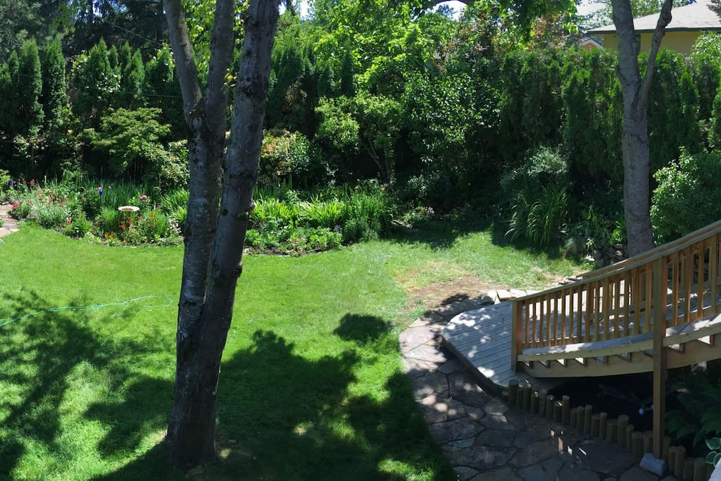 From the deck to the garden