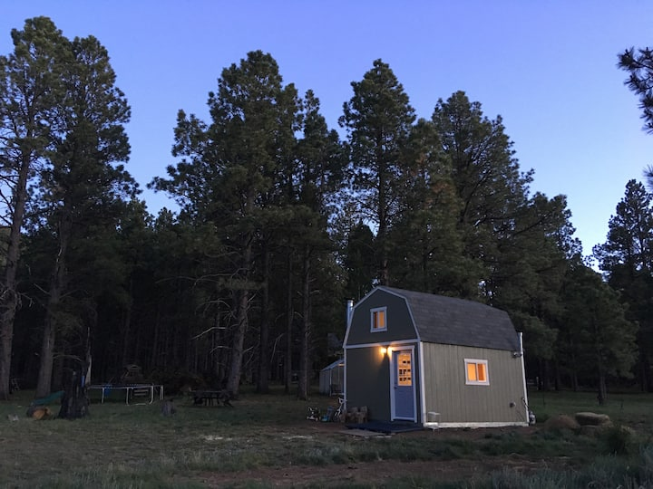 Tiny cabin on the peaks- Flagstaff
