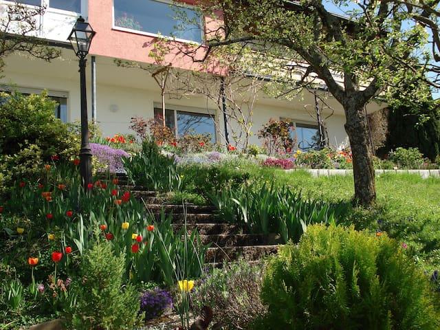 Sonnige 2Zi-Wohnung im Grünen, 2km vom Bodensee - Daisendorf - Appartement