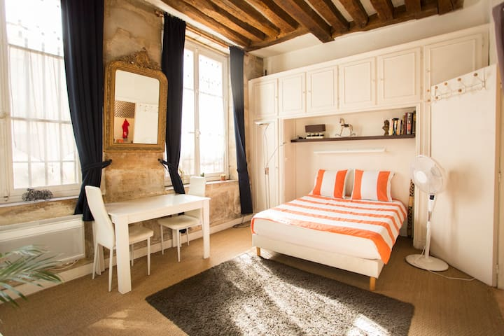 WONDERFUL PRIVATE STUDIO IN LE MARAIS