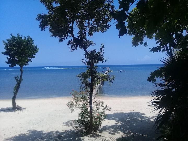 Beachfront Seadancer #4