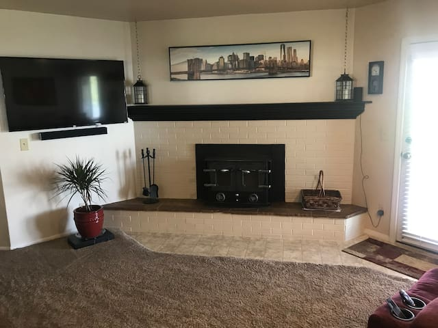 Fireplace in TV Room