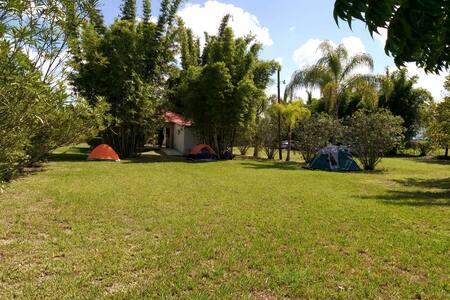 Quinta MYA. Palapa / Camping area