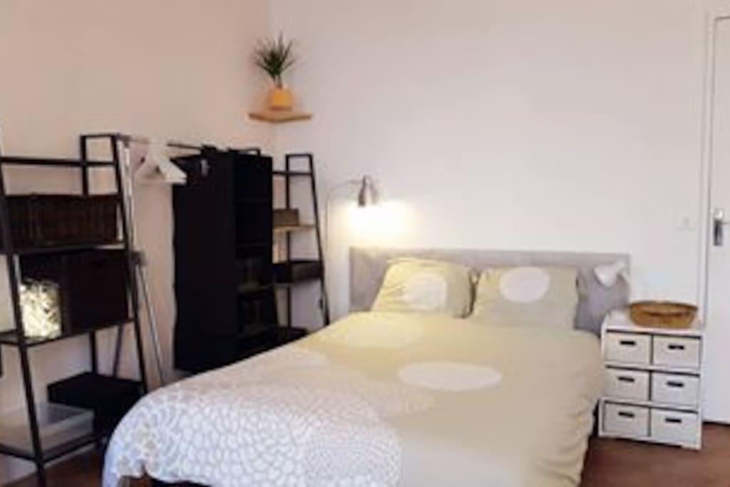 Espace chambre, lit 2 personnes (convertible en canapé), literie de qualité, rangements avec penderie et étagères.