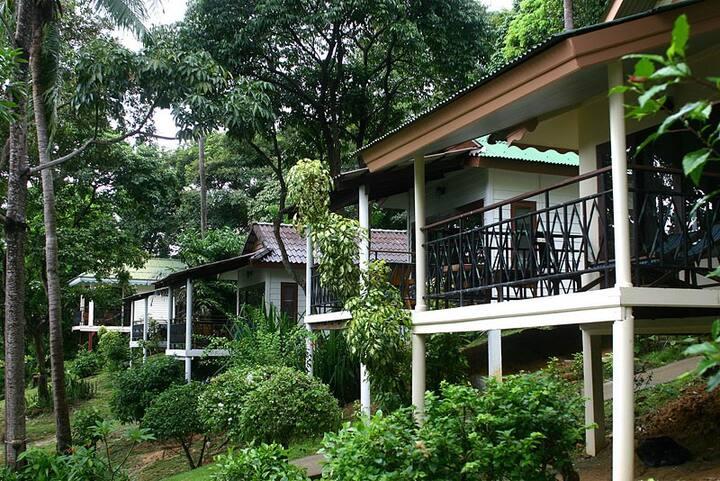 Green Villa at Phi Phi Bay!