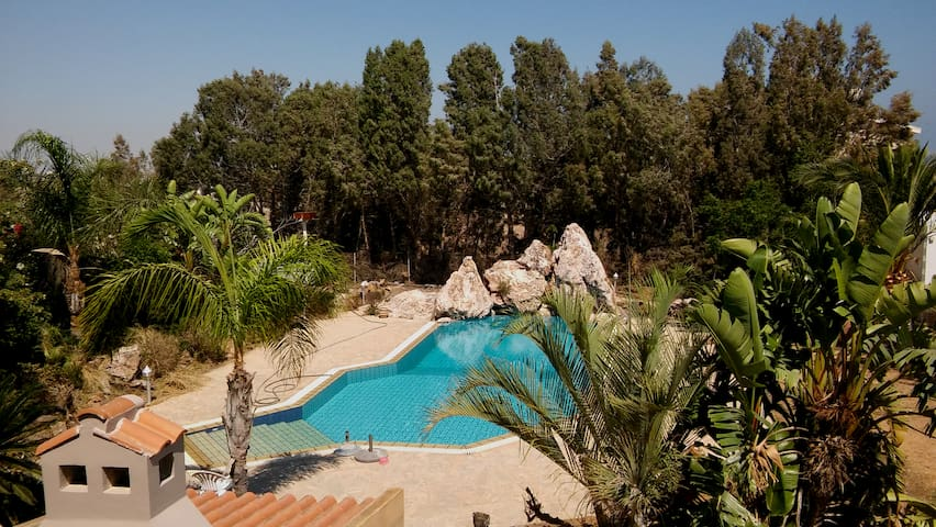 PRIVATE PROPERTY WITH A BIG POOL IN LARNACA