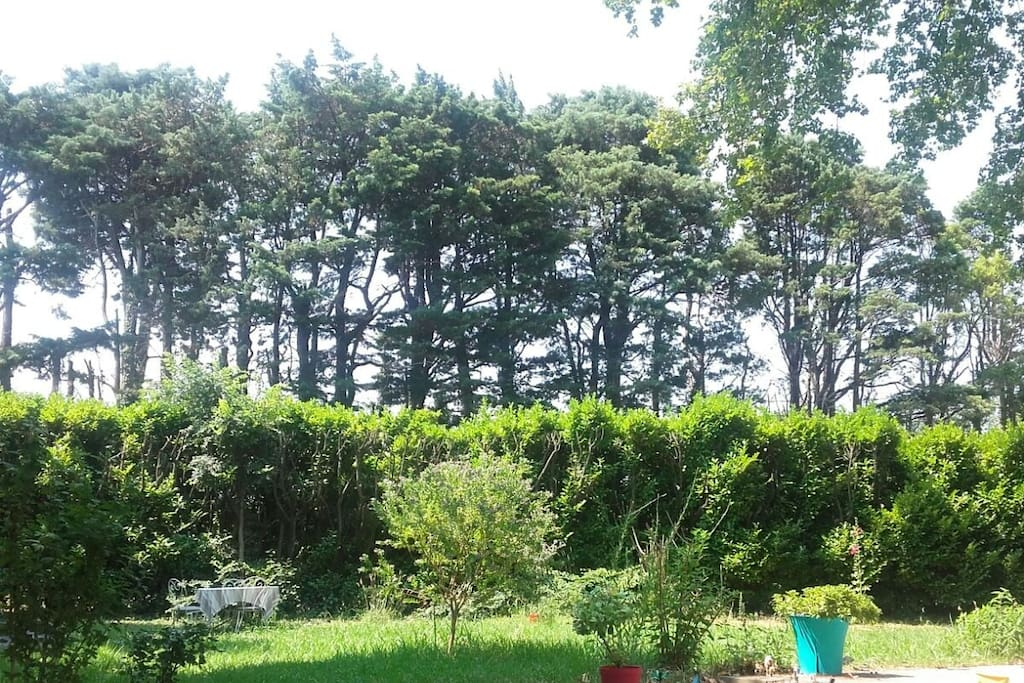 Jardin bucolique