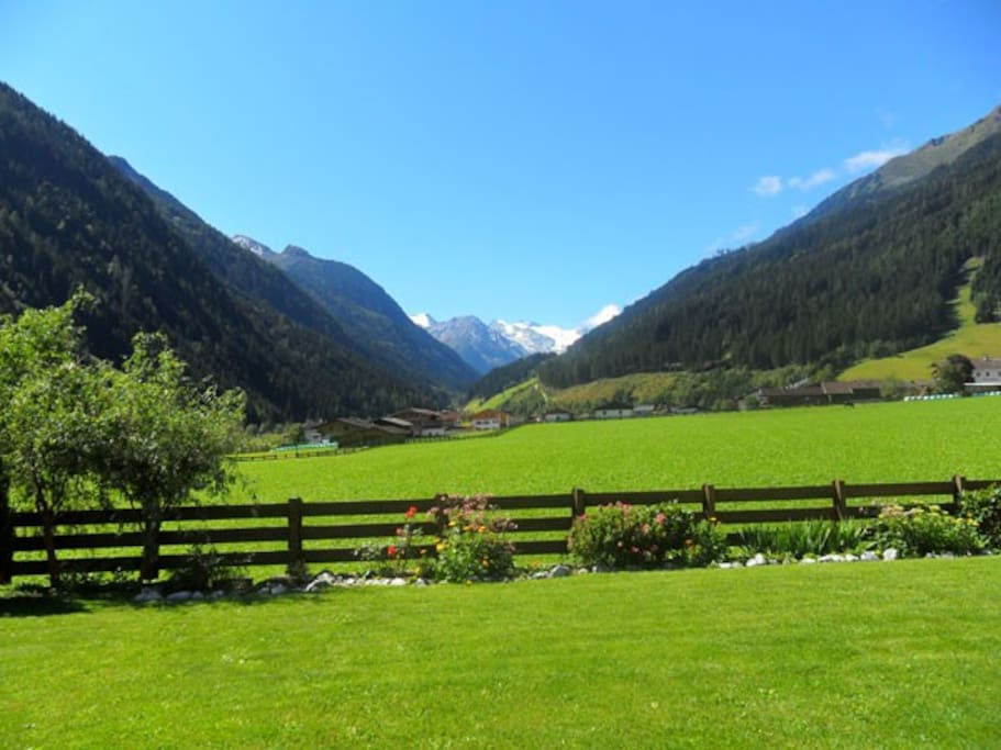 Ausblick von der Ferienwohnung Weitblick. Im Hintergrund die schnee- und eisbedeckten Berge des Stubaier Gletschers.