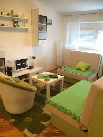New Sasha apartment