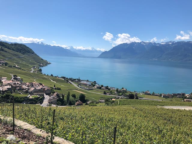 Beautiful family home in the Lavaux vineyards