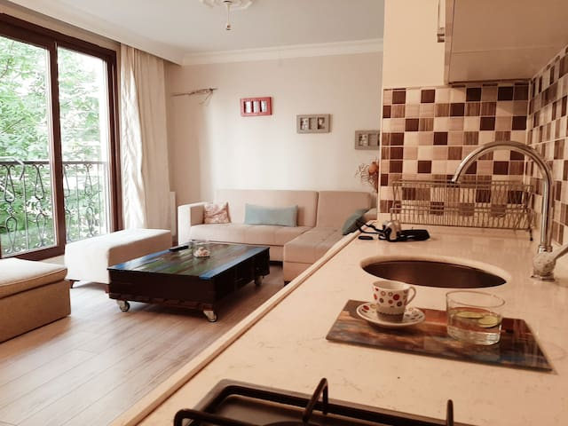 Cosy flat in central of the Istanbul near Taksim