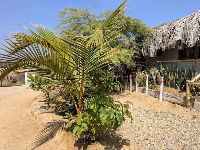 La Capitanna, Punta Sal en familia.