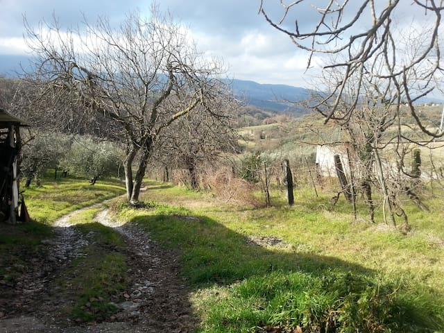 Casa Vacanze relax in Umbria - Stroncone - Daire