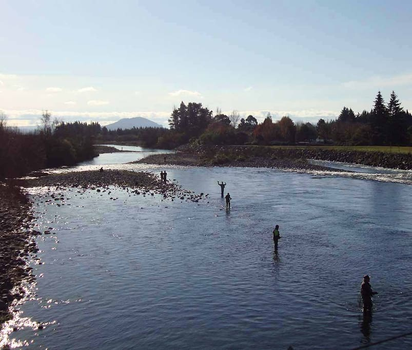 The world famous trout fishing Tongariro River, a minute walk away.