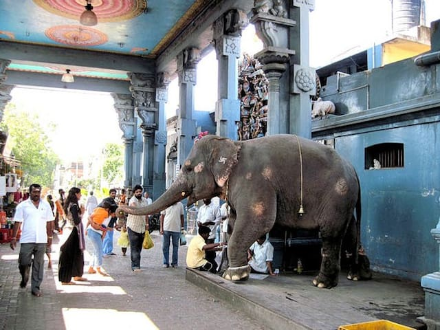 Famous Ganesh Temple near to Sri Aurobindo Ashram