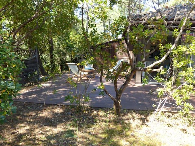 Maison sous les pins Lacanau Océan 4/5 pers+vélos