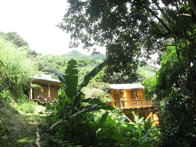 Casa Kadam: Puerto Rico Rainforest Retreat