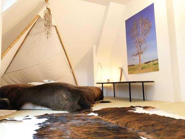 La Chambre Amérindienne :  les Lakota
