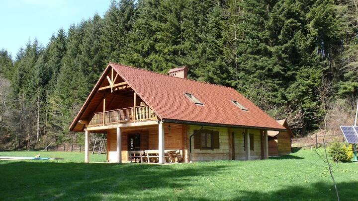 Drewniany dom nad stawami, Żyznów